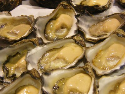 sydney-rock-oysters