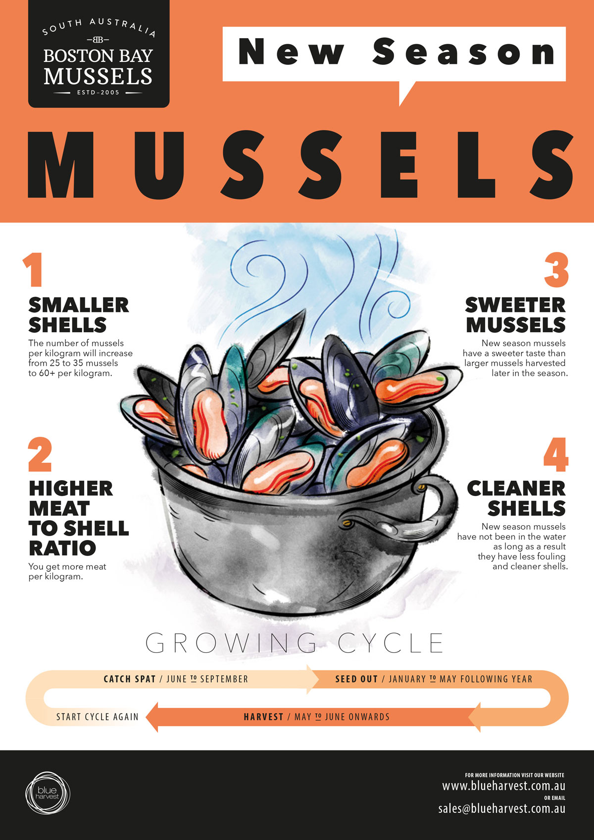 Boston_Bay_MusselsPoster_NewSeason_May_2017_v2